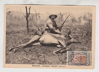 1919 max card,with one water buffalo,Scarce!    f1440