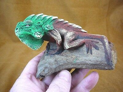 (TL-213) Green Iguana LIZARD reptile TEAK WOOD carving FIGURINE I love lizards