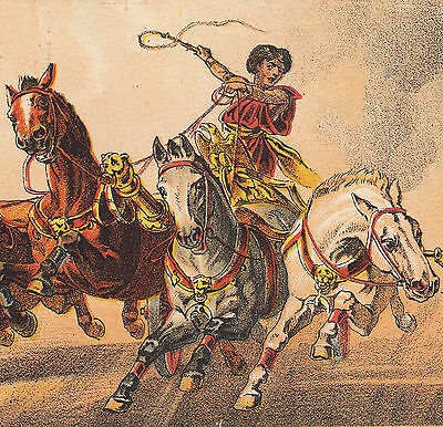 Ben-Hur Chariot Horse Race 1800's Wanamaker & Brown old Advertising Trade Card