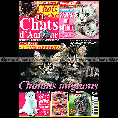 CHATS D'AMOUR N°1-c RACE SPHINX ANGORA PERSAN SIAMOIS ABYSSIN SEVRER UN CHATON