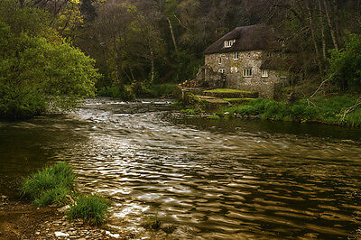 Landscape Photograph, Limited Edition Print. Fine Art. Cottage on the River Taw