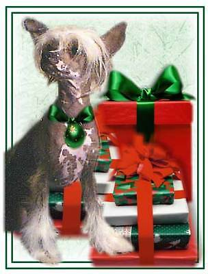 Lovely Chinese Crested Christmas Cards