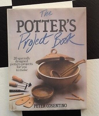 the potter's project book  - peter cosentino