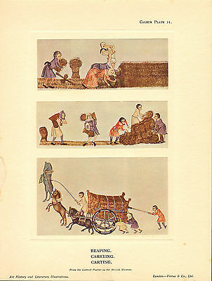 1920s quality colour plate print - reaping - carrying - carting