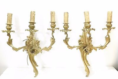 Pair Of Fabulous Antique French Gilt Rococo Sconces With 3 Branches