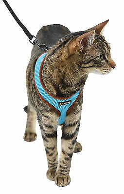 Cat Harness Activ Blue Small Pet Cat 110 cm Leash Lightweight FAST & FREE SHIPP