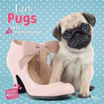Luv Pugs by Myrna Calendar 2017 Dogs Wall Calendar Month View Dog Breeds New