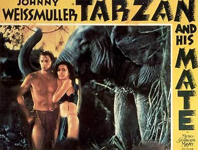 Tarzan and his Mate Johnny Weissmuller Repro POSTER