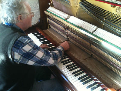 Professional piano tuning and expert inspection: A yearly service for your piano
