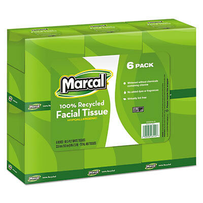 100% Recycled Convenience Pack Facial Tissue, White, 80/Box, 6 Boxes/Pack 4034