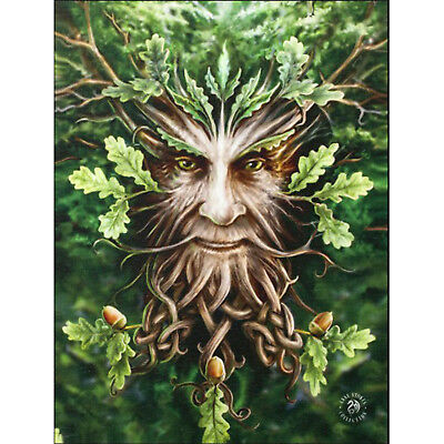 Oak king Anne Stokes Wall Plaque Green Man Tree Pagan Forest Fantasy Art Canvas