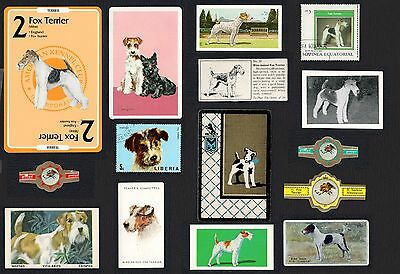 15 Wire Fox Terrier Collectable Dog Cigarette Trade / Breed Cards And Stamps