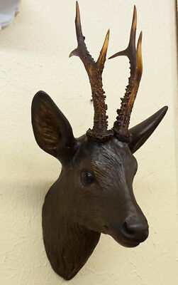 Antique Black Forest Wood Carved Roebuck Stag Head Glass Eyes Antlers c1860