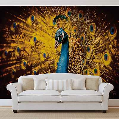 WALL MURAL PHOTO WALLPAPER XXL Peacock Bird Gold Feathers	 (631WS)
