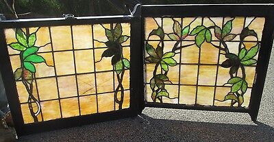Nice Antique Arts & Crafts Stained Glass Dbl Hung Window W/vines & Leaves # 537