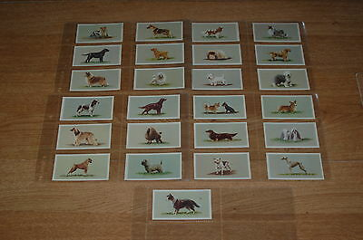 Grandee Top Dogs Collection  FULL SET of Cigarette Cards