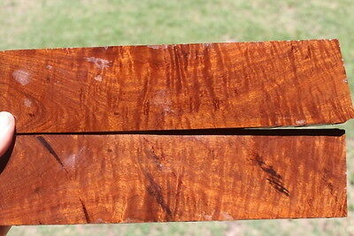 Ringed Gidgee Bookmatched Scales #105
