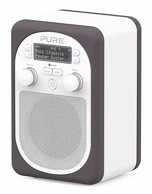 Pure Evoke D2 Mio Portable DAB/FM Radio With Bluetooth - Pewter