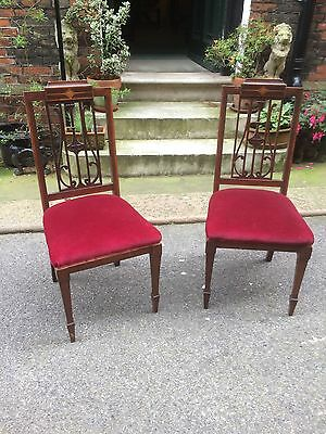 Pair of Art Nouveau Edwardian Hall Chairs