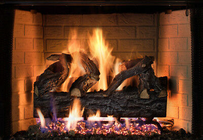 Four Seasons Discovery Elm Vented Dual Burner NG with Remote Liquid Propane