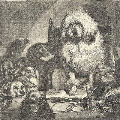 Landseer's Laying Down the Law: antique 1866 engraving print: dog picture animal