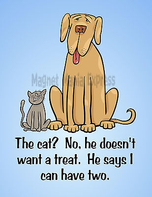 METAL REFRIGERATOR MAGNET Cat Doesnt' Want Treat He Say I Can Have Two Dog Humor