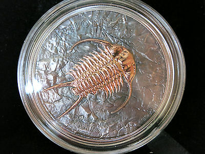 500 Togrog Mongolei 2016 - Trilobite Evolution of Life Silber - Antique-finish
