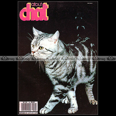 Atout Chat N°29 ★ Race : L'american Shorthair ★ Andre Duranton ★ Leucose 1987