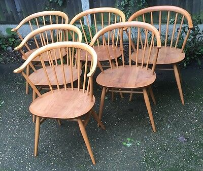 Superb Set Of 6  Retro Ercol Cowhorn  Dining Armchairs, Very Clean Condition,
