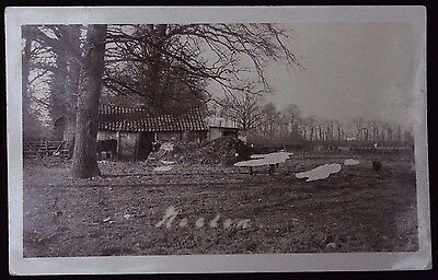 "Nice Vintage B&W Real Photograph Postcard ""Donkey in a field"" Card Damaged"