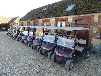 Ezgo Golf Buggy 2013 Electric One Owner In Good Order Choice Of 12