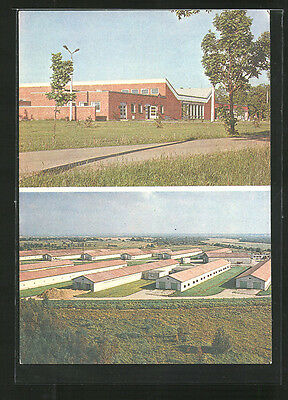 alte AK Ranna, Services building and broiler factory