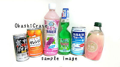 6 pcs JAPANESE DRINK Set DECEMBER Gift JAPAN box christmas ramune candy CALPIS