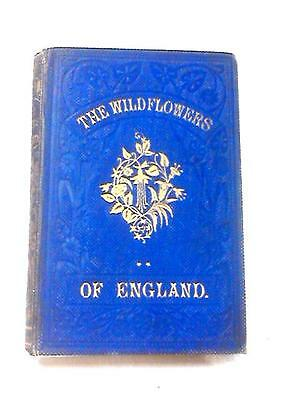 The Wild Flowers of England (Tyas Rev. Robert - 1860) (ID:97395)