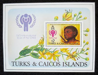 Turks & Caicos Islands - 1979 - Year of the Child - SG MS 544 - MNH