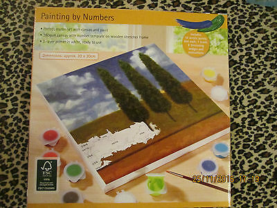 PAINTING BY NUMBERS - ACRYLIC SET - 30x30cms CANVAS & PAINT - BNIB - TREES