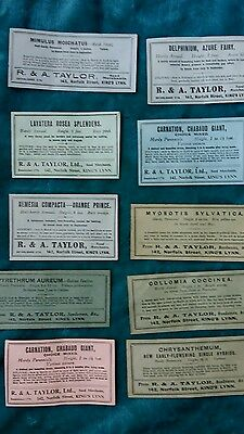 New Vintage English seed packets with Interesting Names