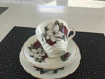 Regency Bone China Trio Made In England Beautiful Floral Decoration