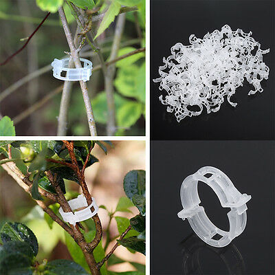 100pcs Plant Vine Tomato Stem Clips Supports Connect to Trellis Twine Cages HG