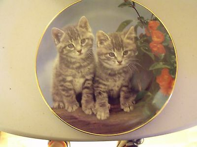 GUY WITHERS from PURRFECT PORTRAITS SERIES...TWO OF A KIND