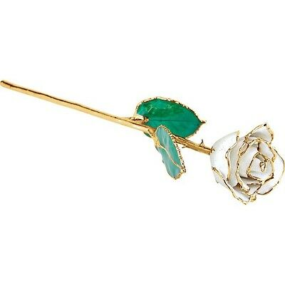 Genuine Real Lacquered APRIL DIAMOND WHITE ROSE With 24kt Yellow Gold Trim