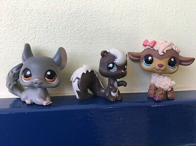 Littlest Pet Shop Bundle Group of Three Animals - Skunk, Chinchilla, Lamb Sheep