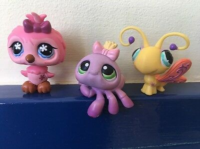 Littlest Pet Shop Bundle Group of Three Insects Bird - Spider, Butterfly, Owl