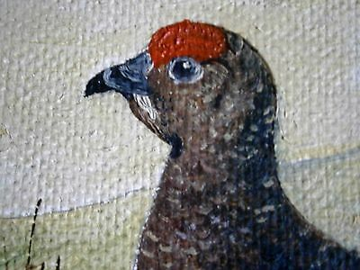 Original oil painting of a Grouse by R. Hastings