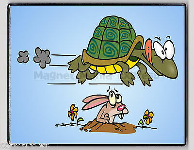 METAL MAGNET Turtle Running Past Rabbit In Hole Humor Reptile MAGNET X