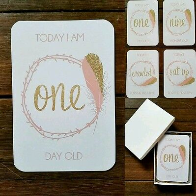 Baby Milestone Cards - Girl - Gold Pink Feather
