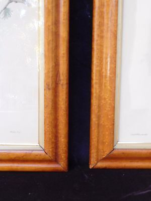 Antique PAIR Frames Ogee Birdseye Maple with Gold Fillet - Bird Prints included