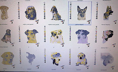 600+ Dog And Some Cat Embroidery Designs In Pes Or Jef On Cd