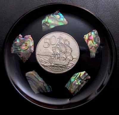 New Zealand Round 50 Cent Endeavour Display