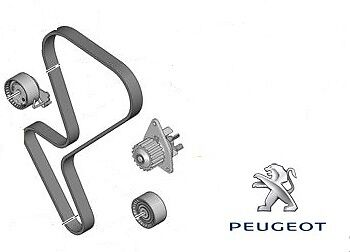 Genuine Peugeot Water Pump Kit - 1609121180